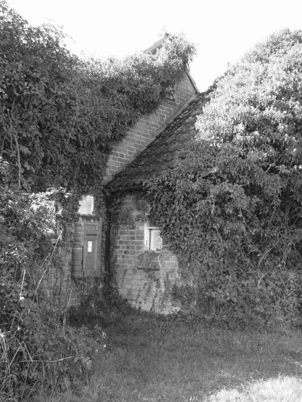The Wigboroughs' Village Hall