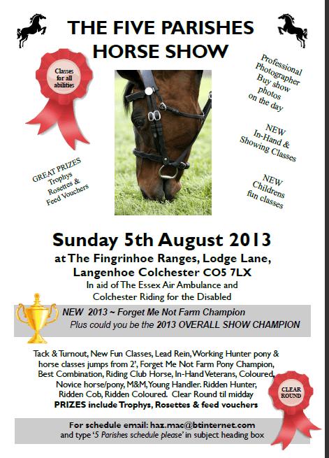 2013-5-parishes-horse