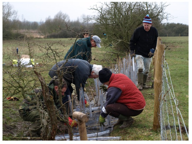 abberton volunteers